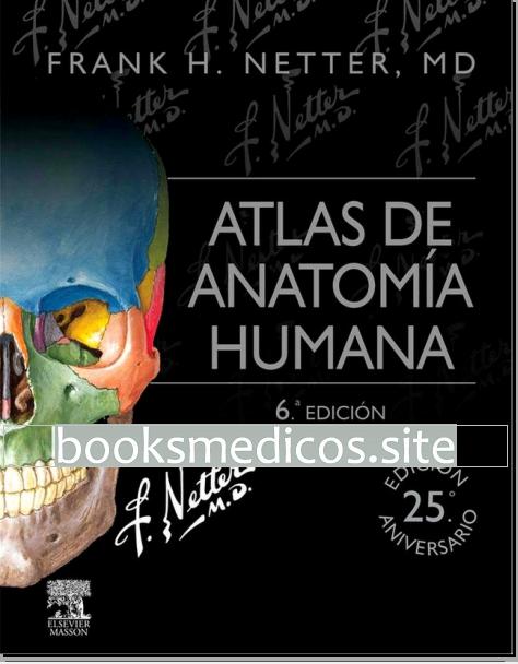 Atlas de Anatomia Humana 6ta Ed. (Netter)