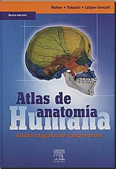 Atlas de anatomia humana (Rohen y Yokochi)